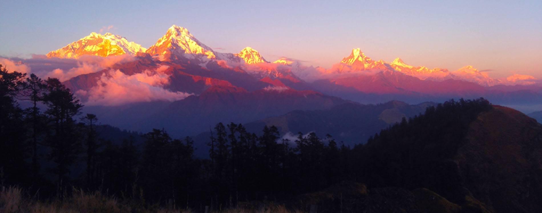 5 Days Ghorepani Poon Hill Trek