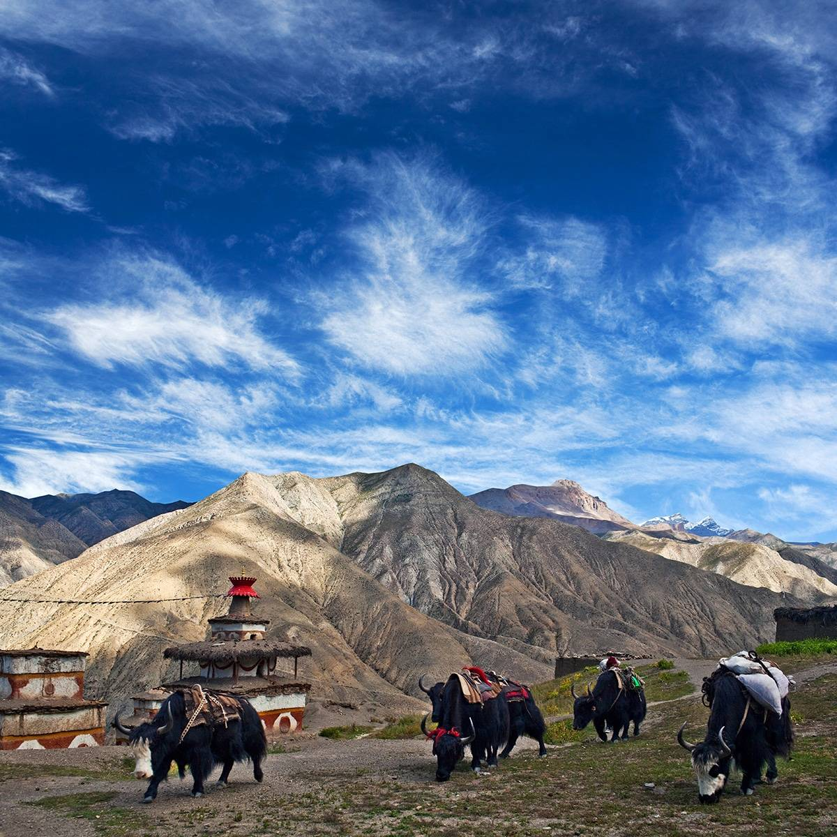 28 Days Upper Dolpo Trek